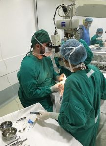 Metcalf surgery