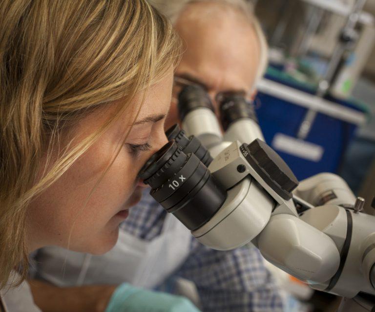 Physician Exam Through Microscopes