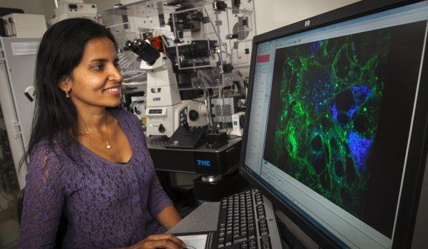 Aparna Lakkaraju Department of Ophthalmology & Visual Sciences