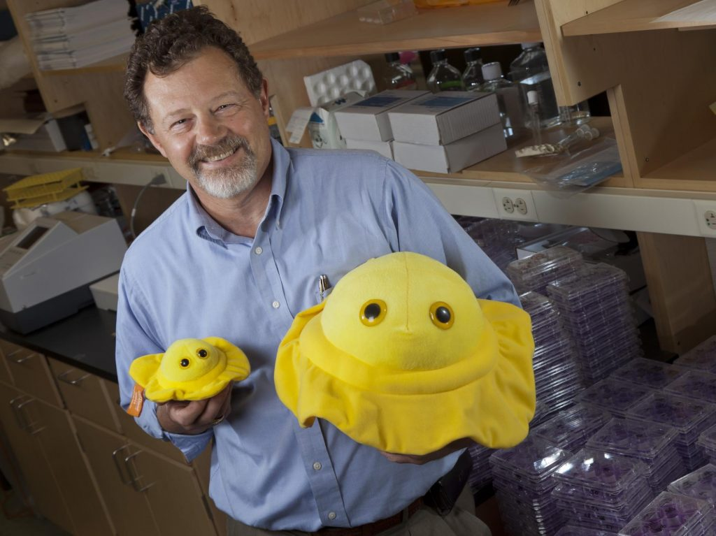 Dr. Curtis Brandt Showing the Stuffed Version of a Microbe